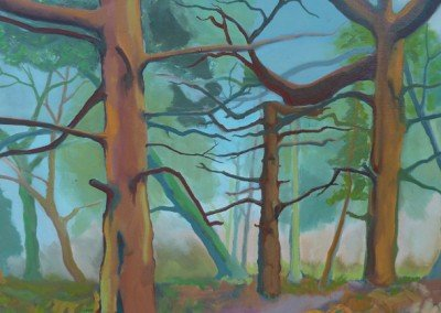 Claire Cansick Firs landscape