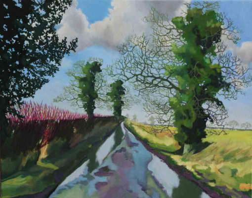 Puddle Lane oil on canvas by Claire Cansick