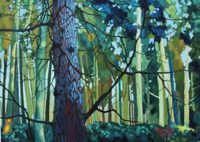 Blue Fir - sold - limited edition prints available