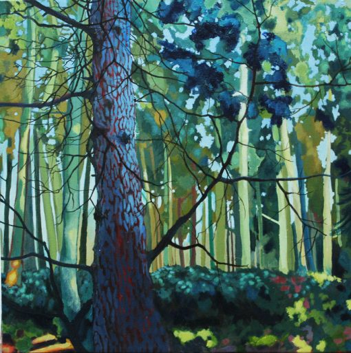 Blue Fir Limited Edition Print Claire Cansick