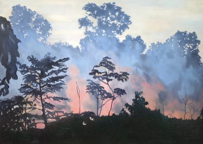 Burning of the Amazon landscape painting by Claire Cansick