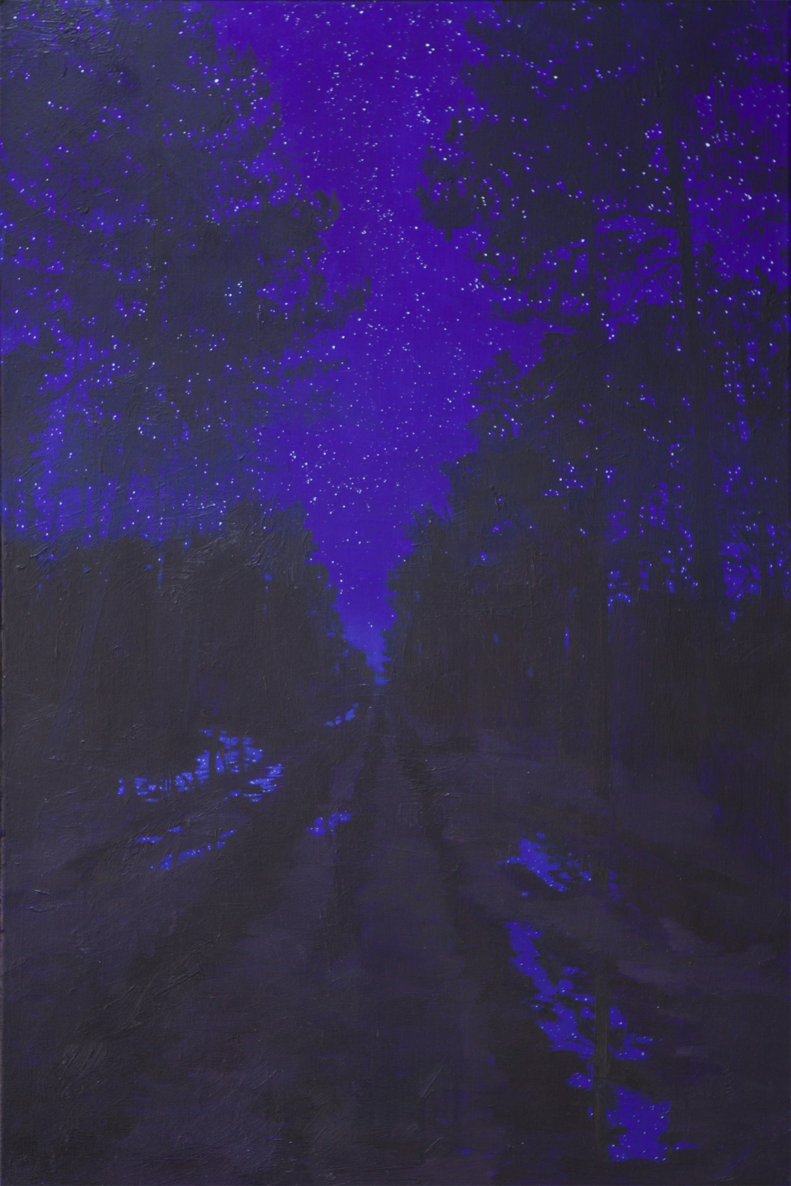 Nocturnal forest painting blue stars Claire Cansick
